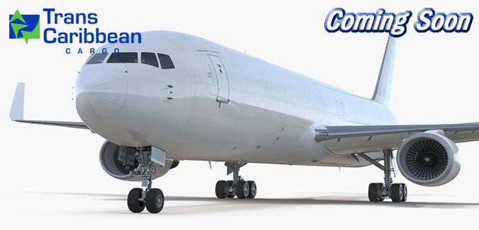 767-300F ingles